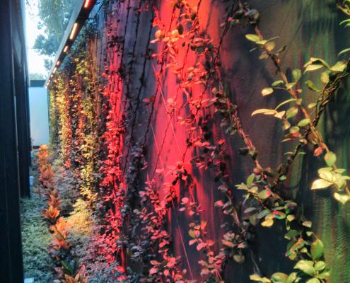 Iluminacion RGB exterior